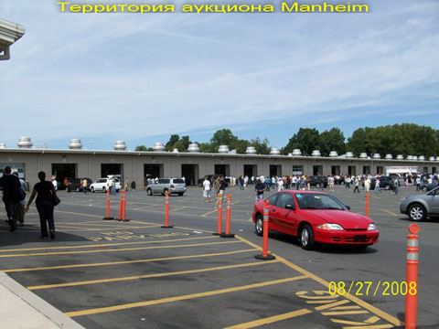 Auction_Manheim